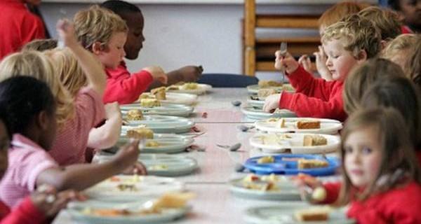 La mensa scolastica ha obbligo di servire cibi biologici e stagionali