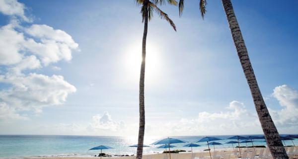 La vacanza perfetta per i bambini avventurosi: il Campo Avventura dell'Elbow Beach