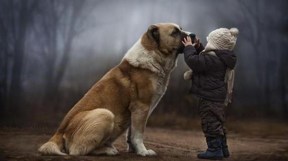 La speciale relazione tra bambini e animali fotografata da Elena Shumilova