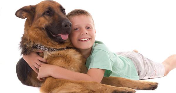 Cani più adatti ai bambini e come farli approcciare a loro
