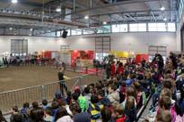 Il Villaggio del Bambino a Fieracavalli: il programma a Verona per tutta la famiglia