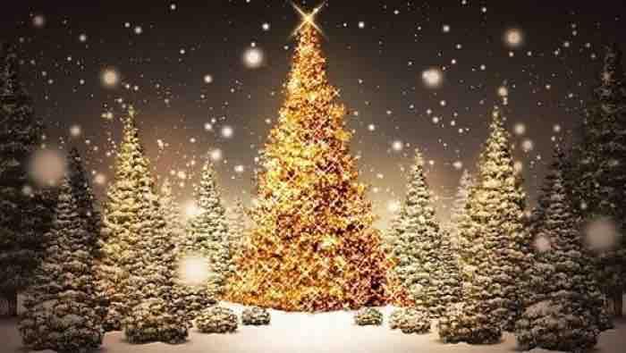 Frasi di Natale per bambini e famiglia ecco le frasi per i biglietti d'auguri
